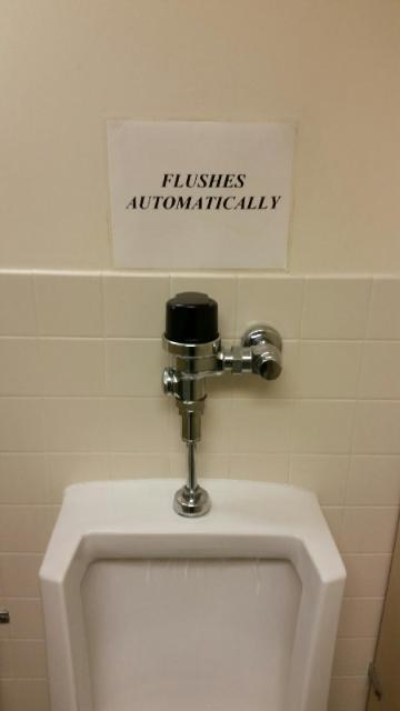 Automatic Flushing Urinal
